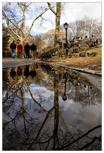 Sidewalk Reflection - Central Park