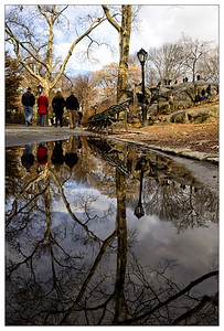 Sidewalk Reflection - Central Park