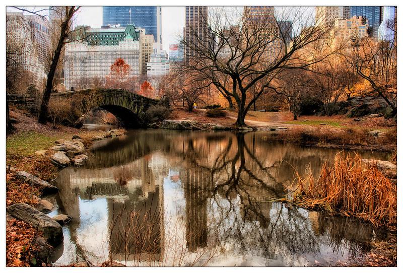 Central Park Glow