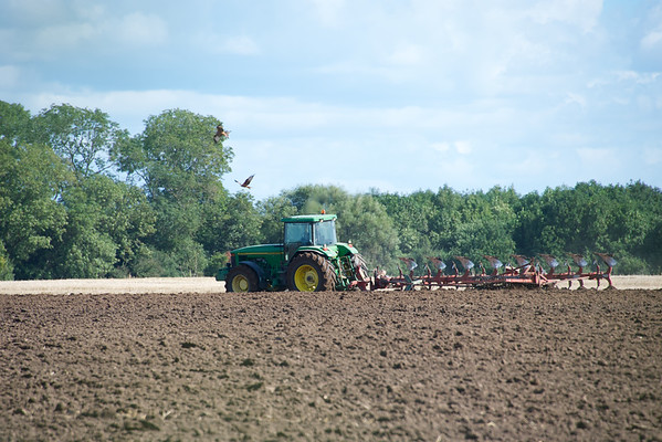 ploughing with kites 2