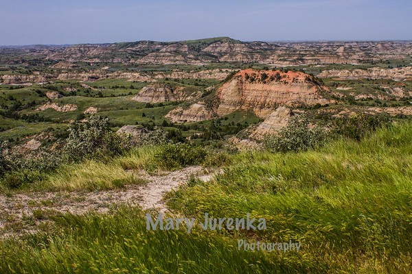 Theodore Roosevelt National Park July 2013