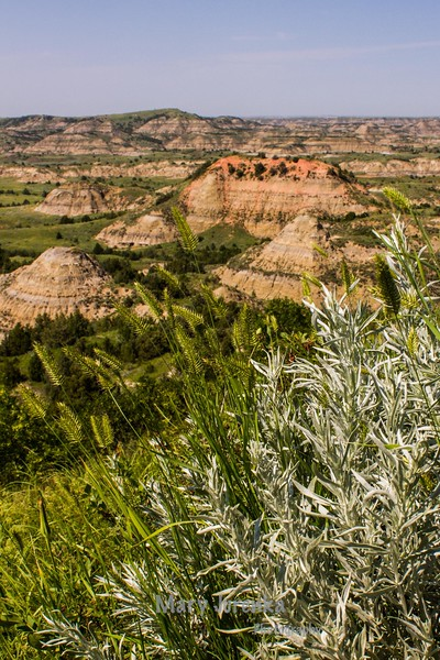 looking down from Painted Canyon Trail in Theodore Roosevelt National Park