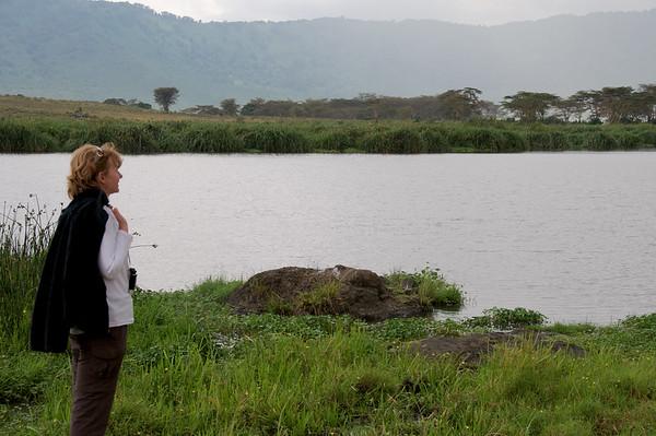 NgoroNgoro Hippo pool