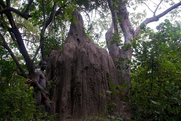 Safari-walk with Guide, Termite mound