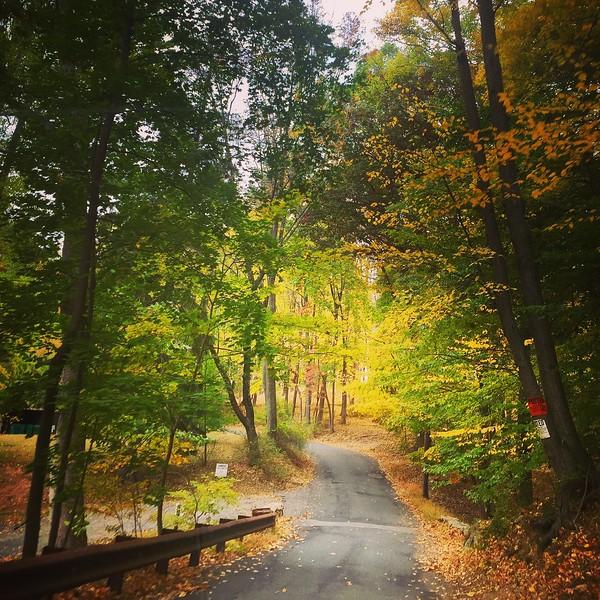 Backroads of New Jersey, Fall, 2016