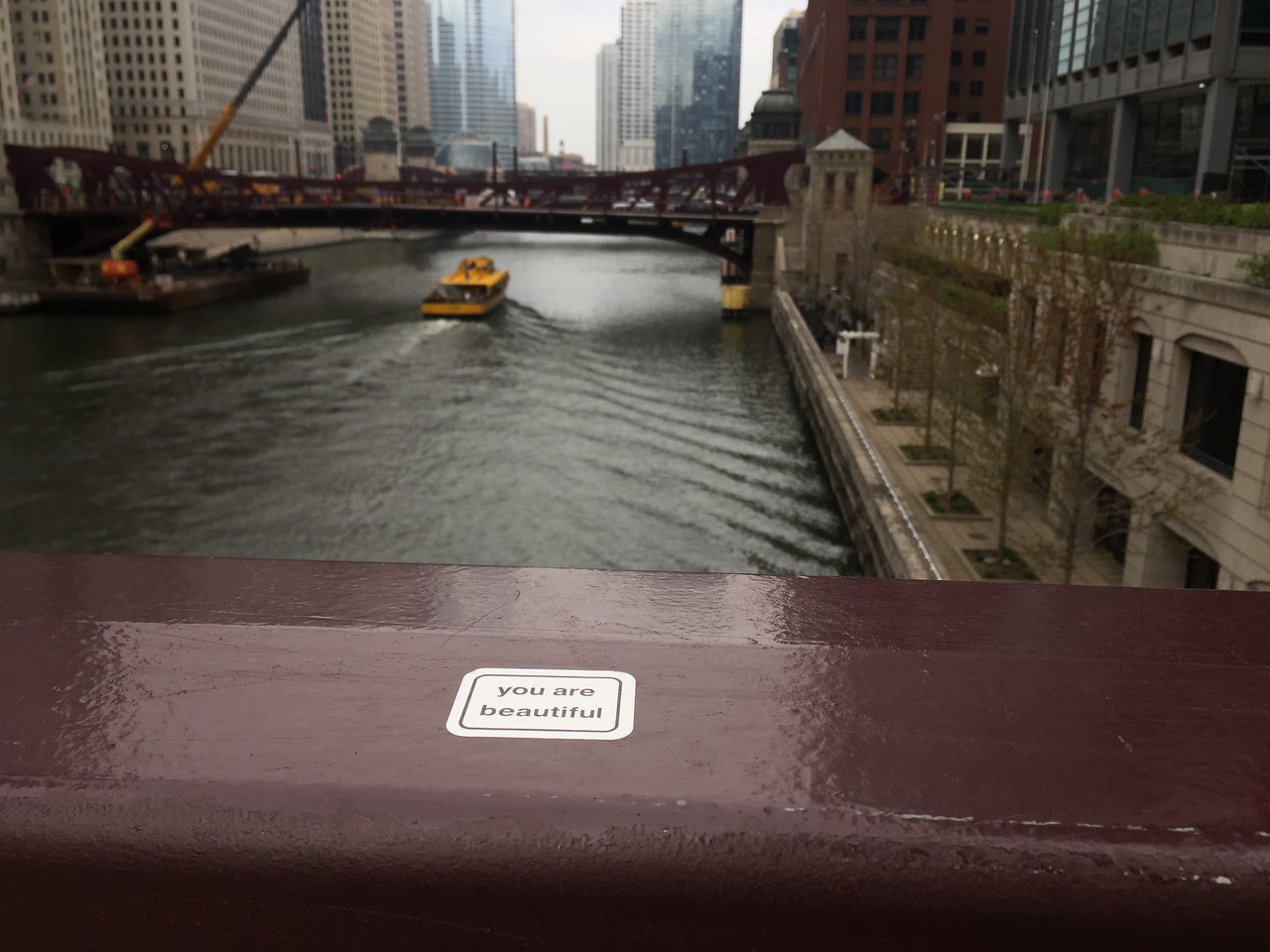 Little Things in Chicago