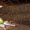 Vinales: Organic Farm; tobacco barn.