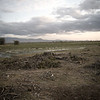 KEN1984060055 - Kenya, Amboseli NP, 6-1984
