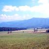 USA1978070223 - USA, Smoky Mountains NP, Tennessee, 7-1978