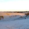 USA1980120022 - USA, Monahans Sand Hills SP, Texas, 12-1980