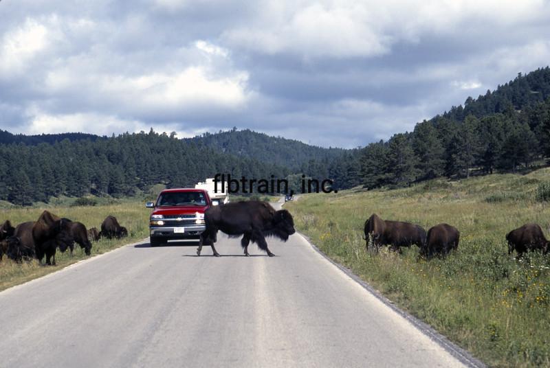 USA1999080009 - USA, Custer SP, South Dakota, 8-1999