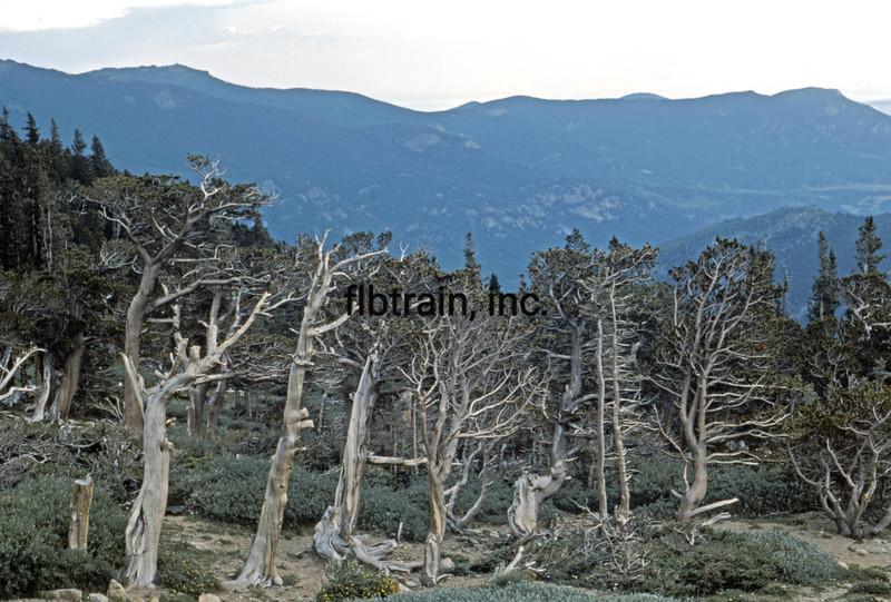 USA1976070286 - USA, Rocky Mountain NP, Colorado, 7-1976