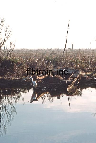 USA1989010003 - USA, Pass Manchac, Louisiana, 1-1989