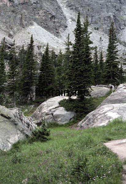 USA1976070125 - USA, Rocky Mountain NP, Colorado, 7-1976