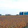 USA1981100010 - USA, Owosso, Michigan, 10-1981