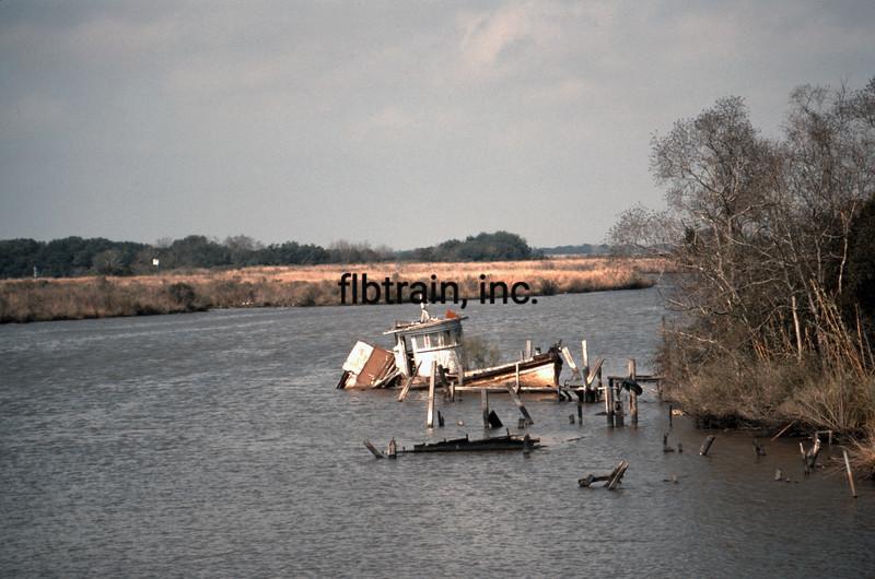 USA1989020055 - USA, Weeks Island, Louisiana, 2-1989