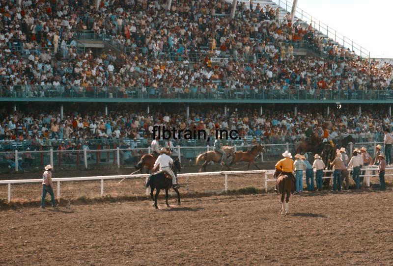 USA1976070024 - USA, Cheyenne, Wyoming, 7-1976