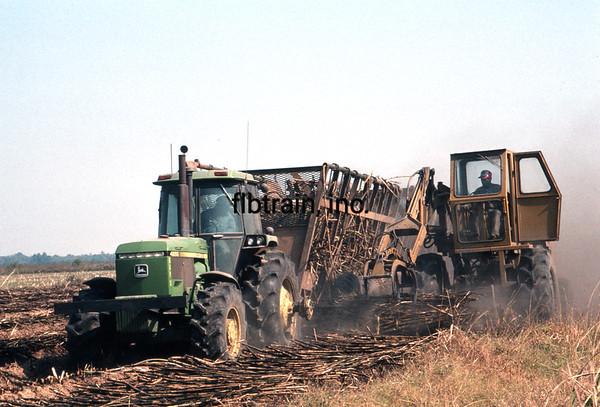 USA1987110003 - USA, Louisiana, Patoutville, 11-1987