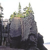 CAN1982090106 - Canada, Fundy NP, 9-1982