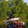 USA1990060029 - USA, Bayou Manchac, Louisiana, 6-1990