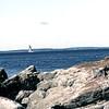 USA1982090134 - USA, Acadia NP, Maine, 9-1982
