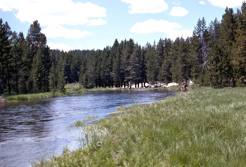 USA1970070029 - USA, Yellowstone NP, Wyoming, 7-1970