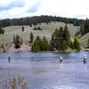 USA1970070031 - USA, Yellowstone NP, Wyoming, 7-1970