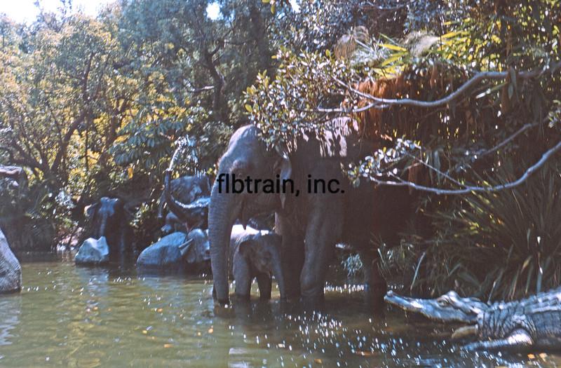 USA1965090028 - USA, Disneyland, California, 9-1965