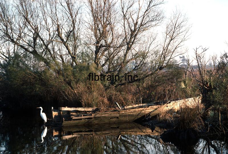 USA1989010008 - USA, Louisiana, Bayou Manchac, 1-1989