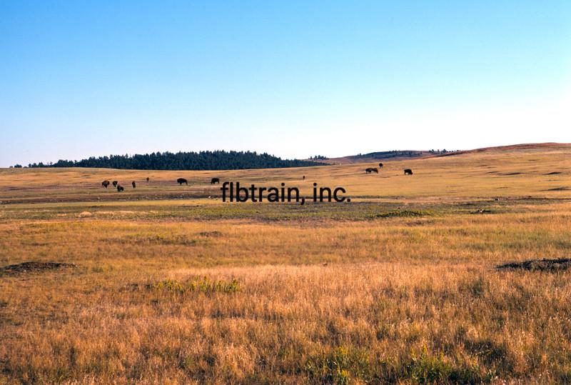 USA1974090043 - USA, Wind Cave NP, South Dakota, 9-1974