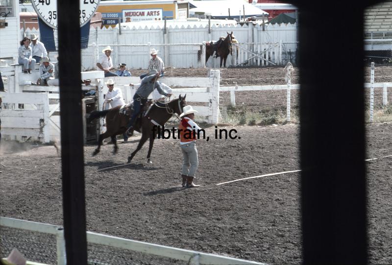 USA1976070011 - USA, Cheyenne, Wyoming, 7-1976