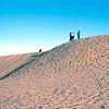 USA1980120056 - USA, Monhans Sand Hills SP, Texas, 12-1980