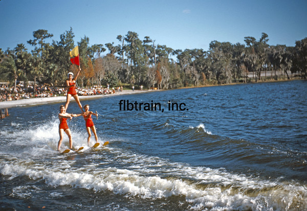 USA1953021011 - USA, Cypress Gardens, Florida, 2-1953