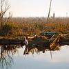 USA1989010002 - USA, Pass Manchac, Louisiana, 1-1989