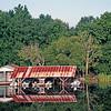 USA1990060025 - USA, Bayou Manchac, Louisiana, 6-1990