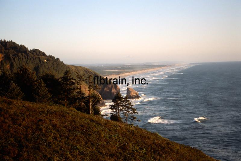 USA1993080011 - USA, Sea Lion Point, Oregon, 8-1993