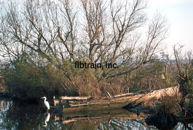 USA1989010007 - USA, Manchac, Louisiana, 1-1989