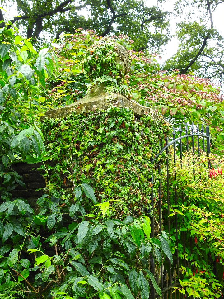 Gate, The Lost Gardens of Heligan, Cornwall