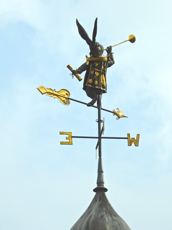 Whimsical Tavistock Weather Vane