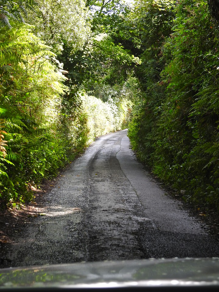 A Cornish Road (two way!)