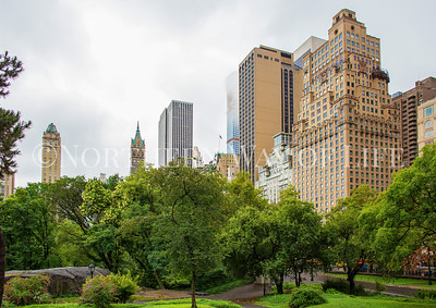 Central Park and New York City