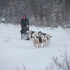Musher and dog sled team, Churchill, Canada
