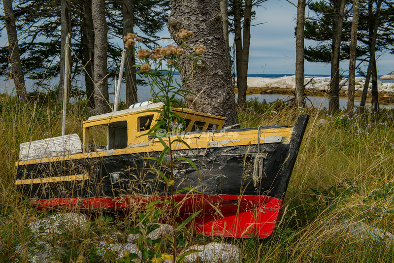 A beached boat
