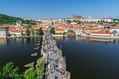 Charles Bridge and Vltava River