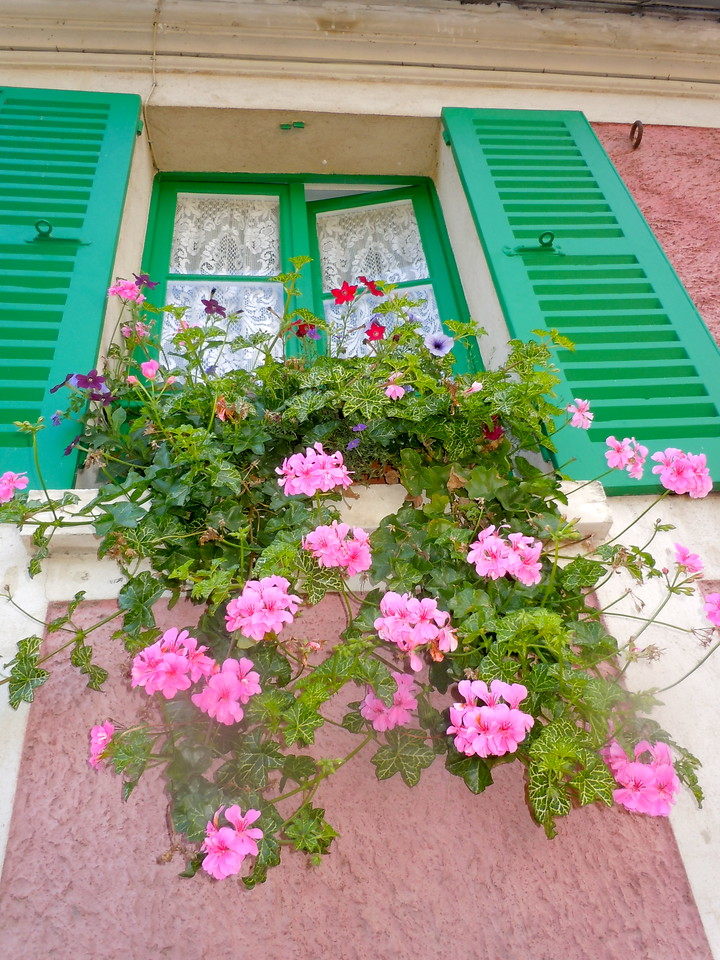 Window Box, Giverny