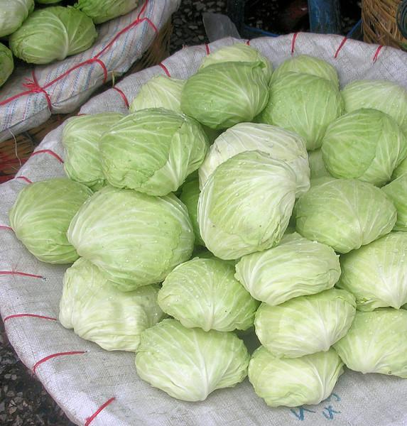 Cabbages, Bangkok Flower Market