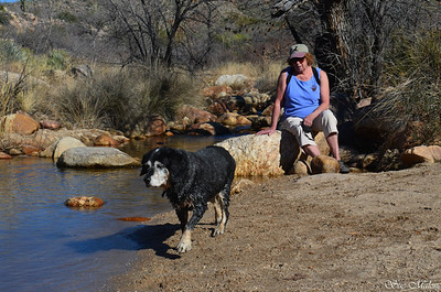 01-06-2014 Catalina State Park