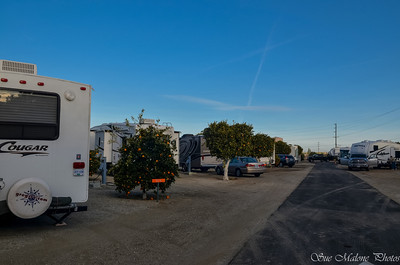 lined up early in the morning at Orange Grove RV Park
