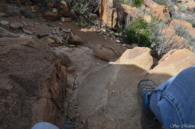 now I have to get back down this dang trail.  I left my sticks below for the rock climb