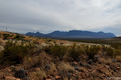 The Chisos Mountains from Painted gap